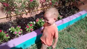 child watering flowers (C)